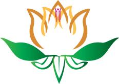 Denver qigong lotus